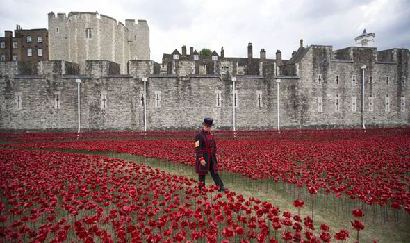 Tower of London Poppies Images Tower of London Poppies