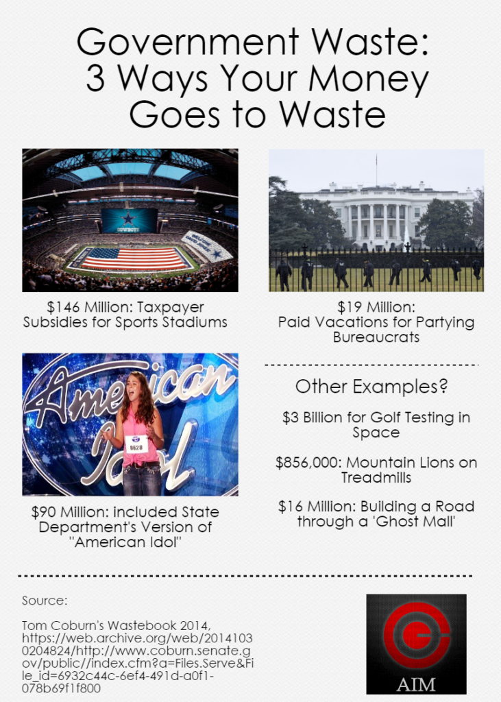 Government Waste Fact Sheet