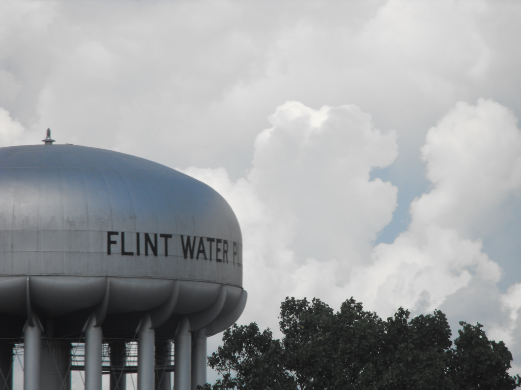 a history of federal bureaucracy in flint michigan It looks like there is no newsday subscription the city of flint, the state of michigan, and the federal environmental bloat bureaucracy.