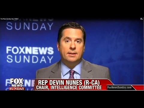 Image result for nunes fox